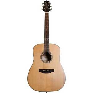 Takamine GD20-NS Acoustic Guitar   6-String   Natural