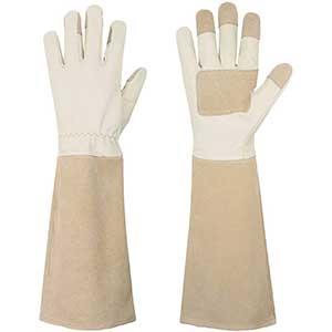 Handlandy Thorn Proof Gloves   Pigskin Leather